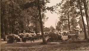 Обоз 24-й телеграфной роты во время стоянки.