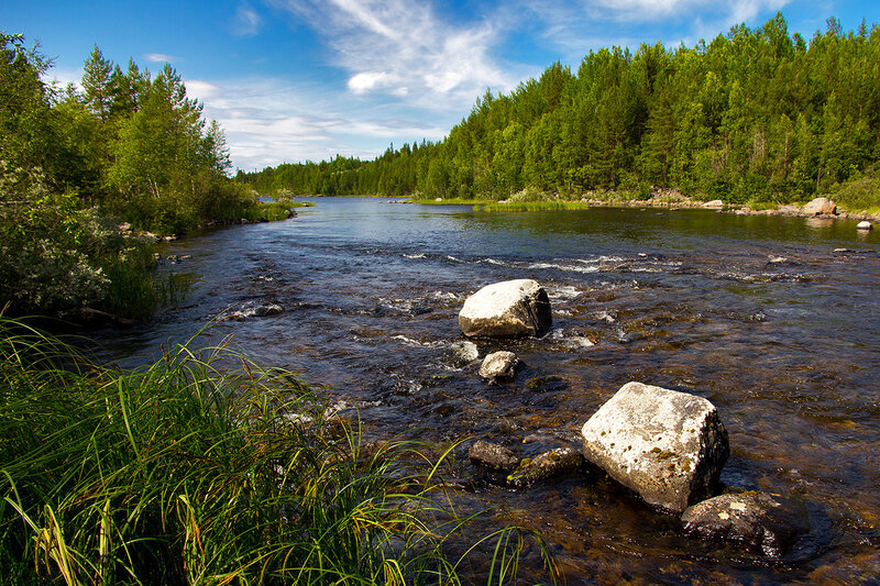 Исток некогда могучей реки Ковда из оз. Верховское