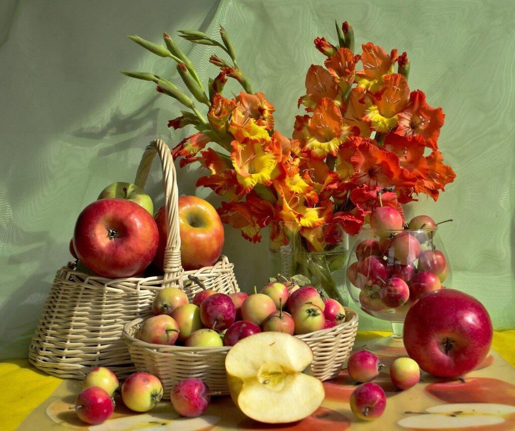 Яблочки бывают большие и маленькие