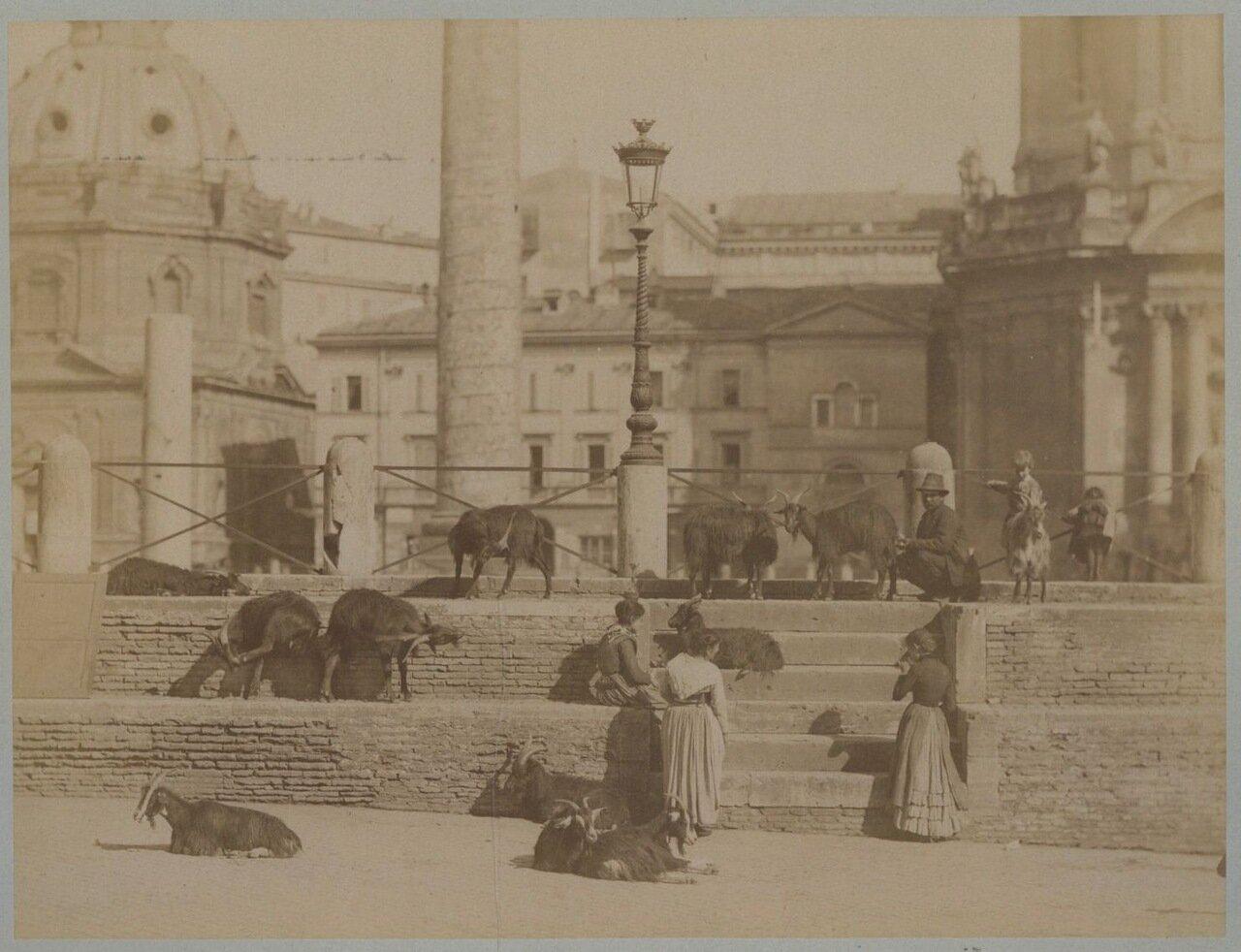 Форум Траяна.1880