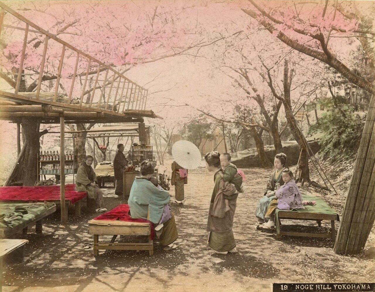Иокогама. Холм Ноге