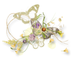 meadowbut_cluster5 (1).png