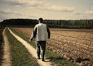 Фермеры в Молдове получили отсрочку по кредитным выплатам