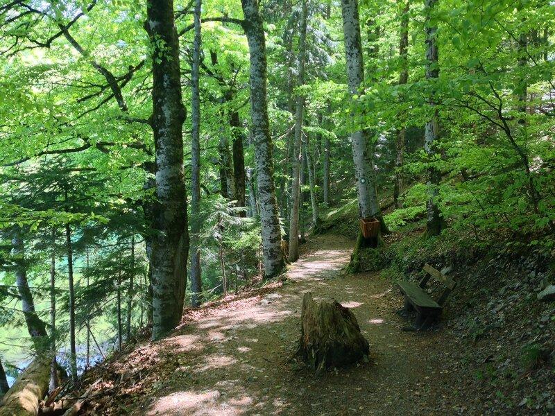 Биоградска гора и озеро в Черногории