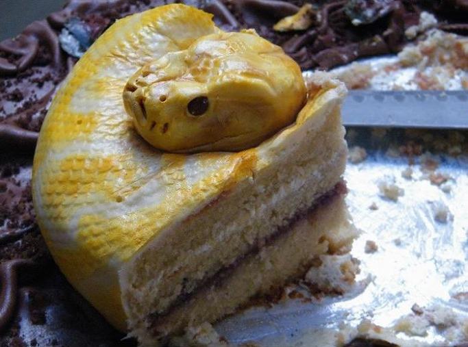 торт змея кусочек