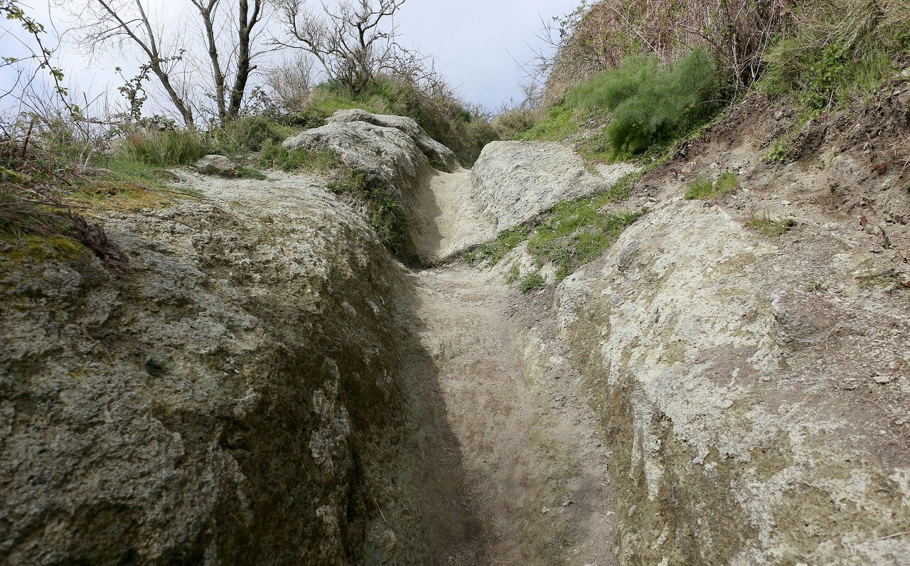 The trail to the top of the Monte Epomeo mountain.