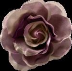 feli_ss_fabric flower.png