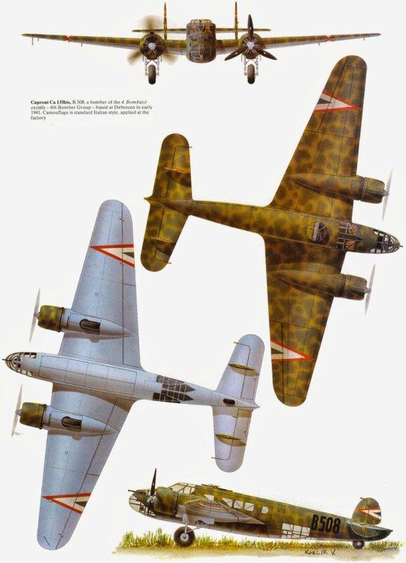 Caproni 135.jpg