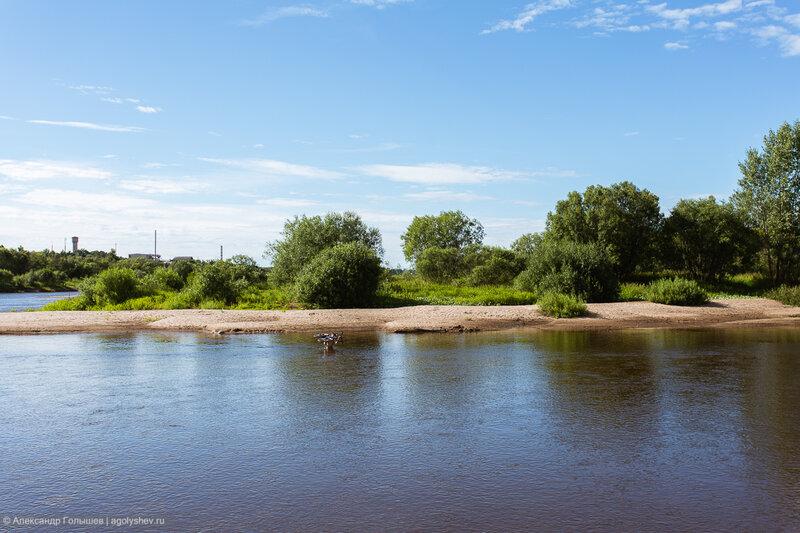 Велопрогулка вдоль реки