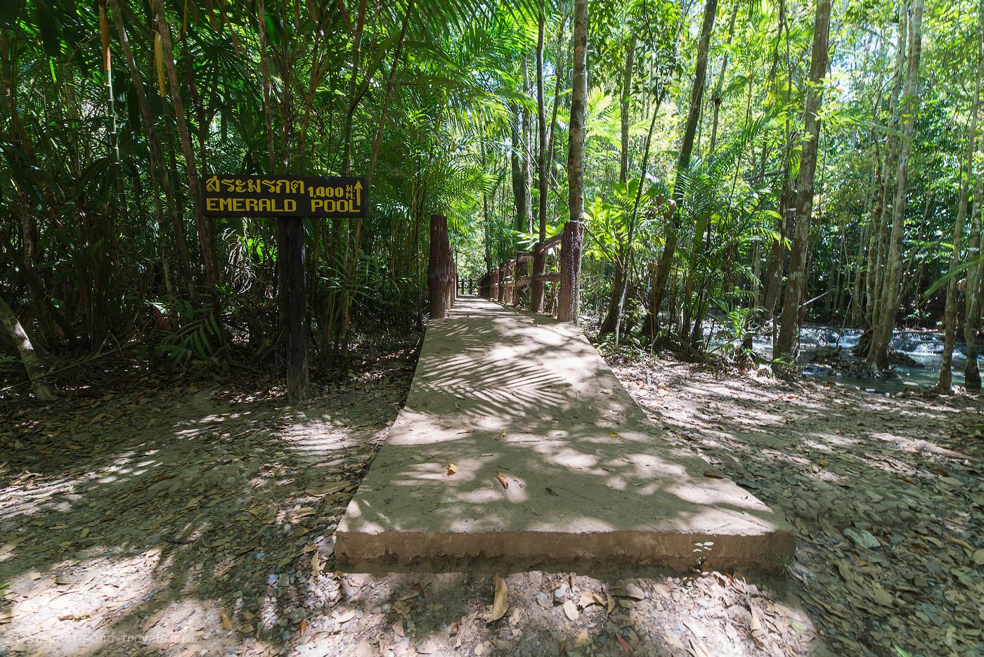 24. Начало длинной тропы к озеру Emerald Pool (Изумрудный бассейн) в парке Khao Phra Bang Khram Nature Reserve (250, 14, 9.0, 1/25)