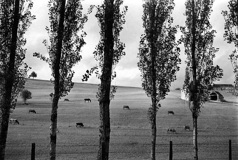 1964. Дорога Брив Болье