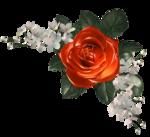 цветы (93).png