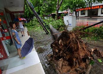 """В результате китайского тайфуна """"Раммасун"""" погибли 33 человека"""