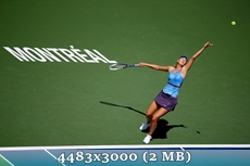 http://img-fotki.yandex.ru/get/6830/14186792.6c/0_de7fb_587466e_orig.jpg