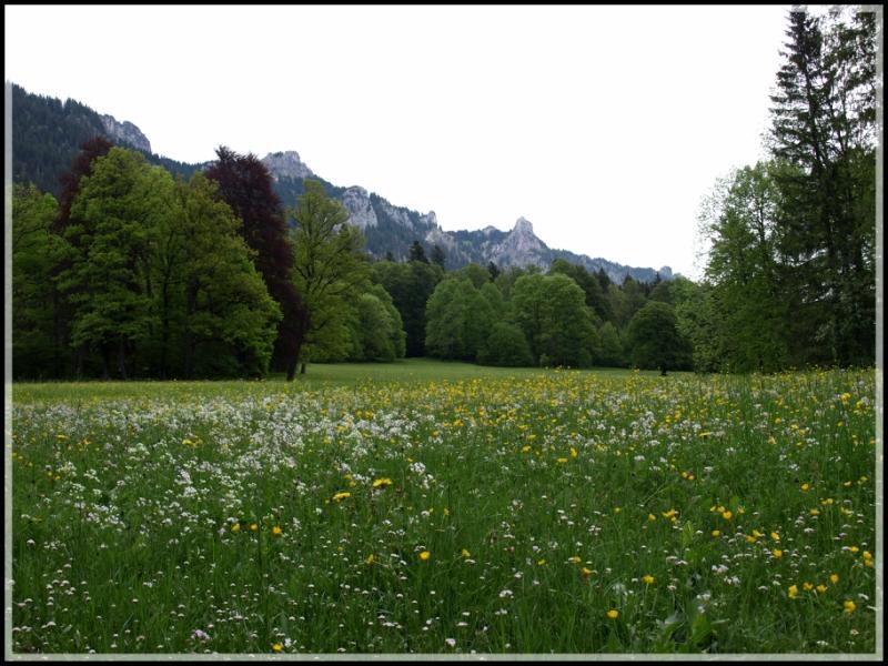 linderhof-078.jpg