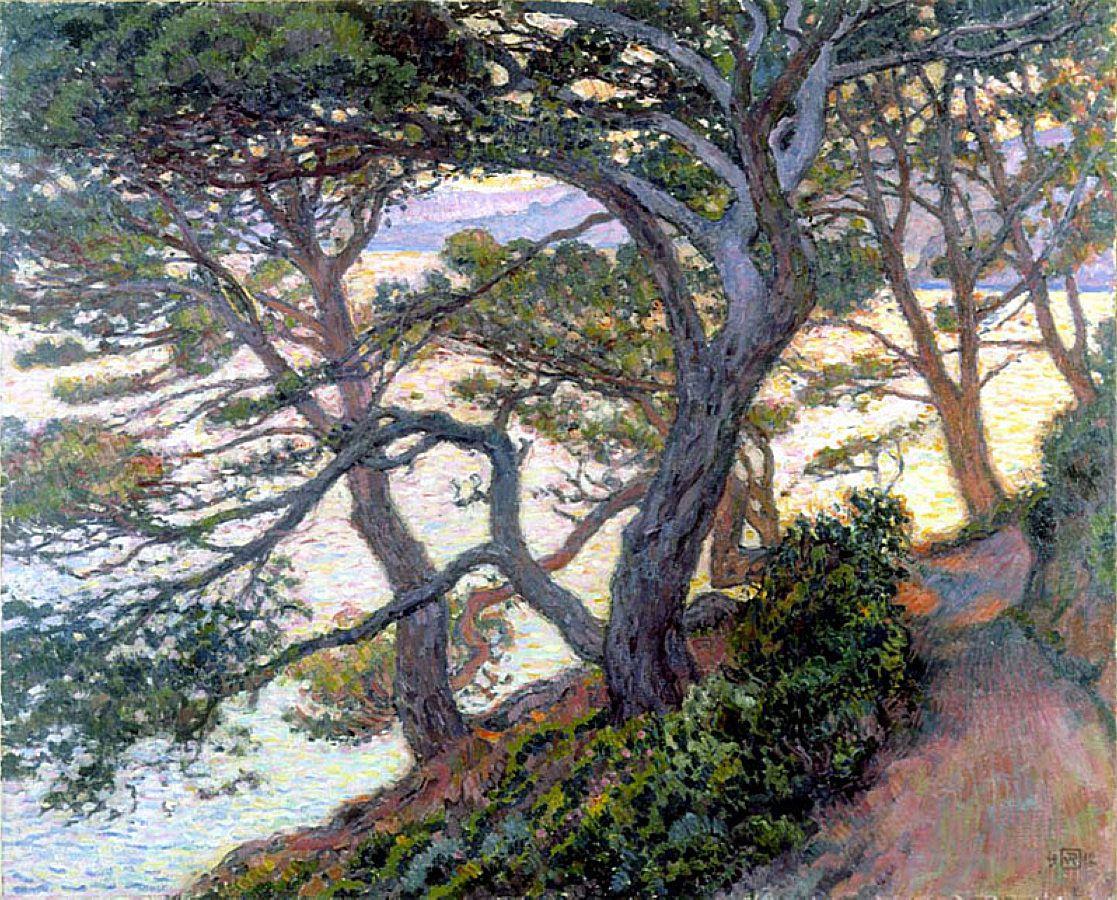 1355151029-pines-of-rayol-1912.jpg