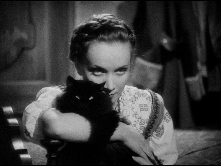 Марлен Дитрих с кошкой