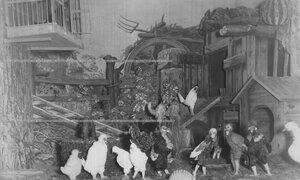 """Сцена из спектакля Б.С. Глаголина """"Шантеклер"""" по пьесе Э. Ростана."""