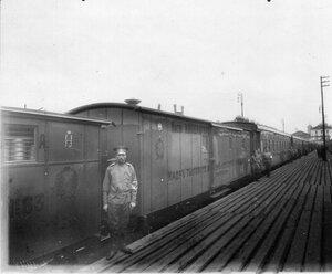 Внешний вид поезда