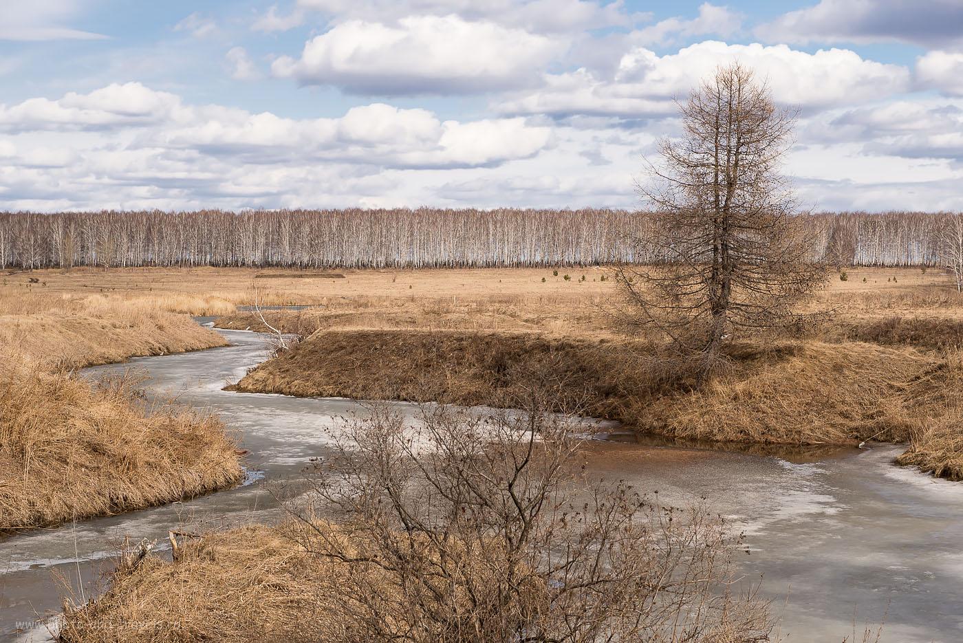 2. Одним ласковым весенним днем в уральских лугах... (Камера Nikon D610 body, объектив Nikkor 24-70/2.8, поляризационный фильтр HD Circular-PL. Параметры съемки: «А», ISO 125, фокусное расстояние 60 мм, диафрагма F/8.0, выдержка 1/60 секунды). По дороге к порогу Ревун на реке Исеть