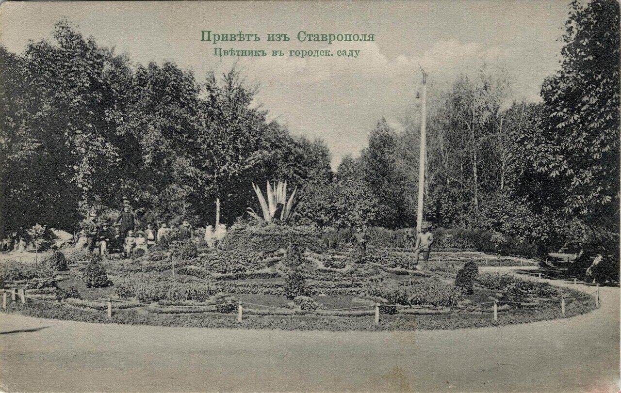 Цветник в городском саду