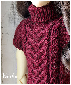 Bordo sweater for SD