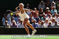 http://img-fotki.yandex.ru/get/6831/14186792.4d/0_da590_e13b2aa6_orig.jpg