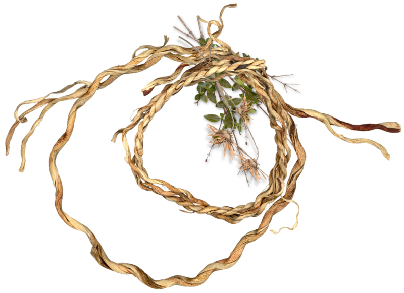nb_np_wreath.png