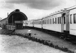 Санитарный поезд у Царскосельского вокзала