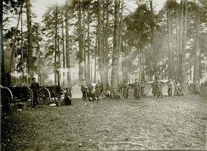 Бивак, разбитый в Козежецком лесу, во время боев за крепость.