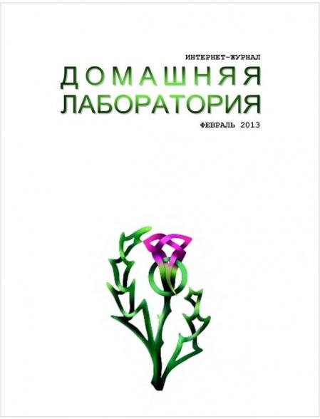 Книга Подшивка журналов : Домашняя лаборатория №№5-12 (2012); №№1-2 (2013)