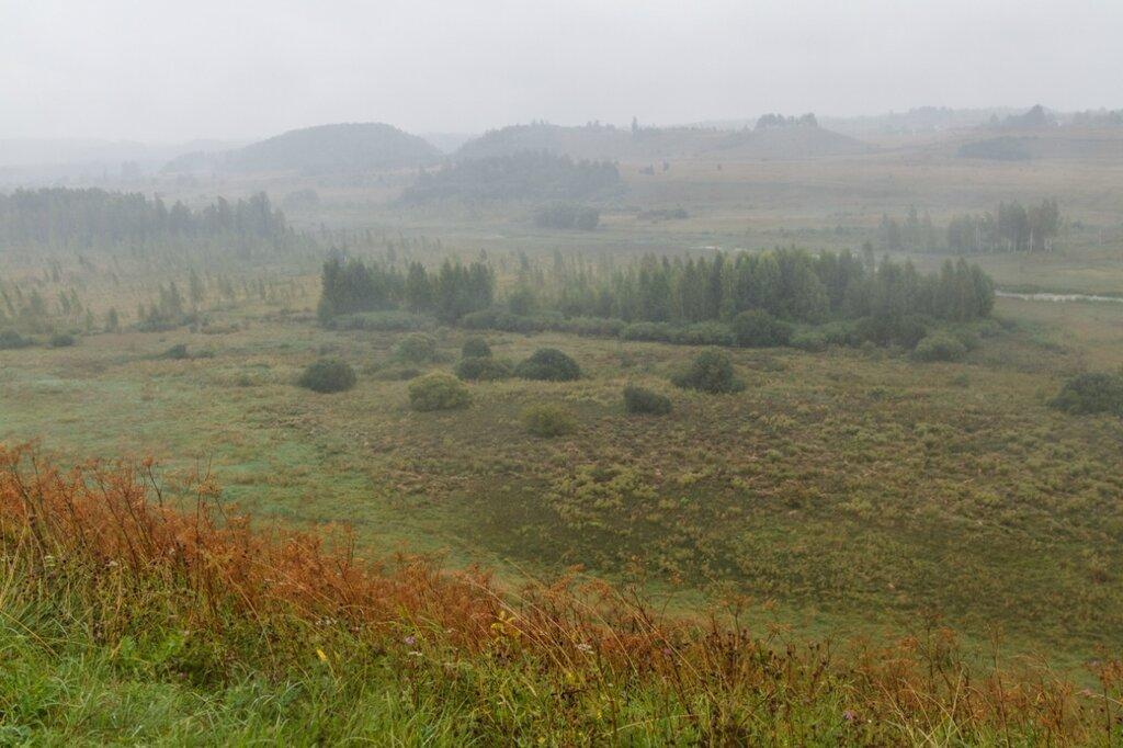 Сухое болото к северу от Городищенского озера, Изборск