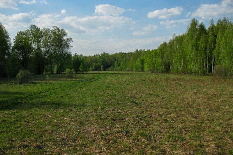 Поле около Пестовского водохранилища