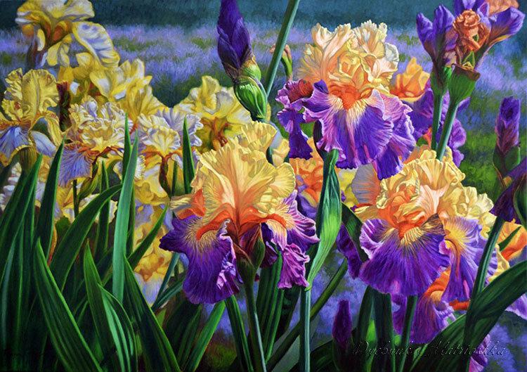 Цветные цветы я сорву на лугу. Художник Fiona Craig