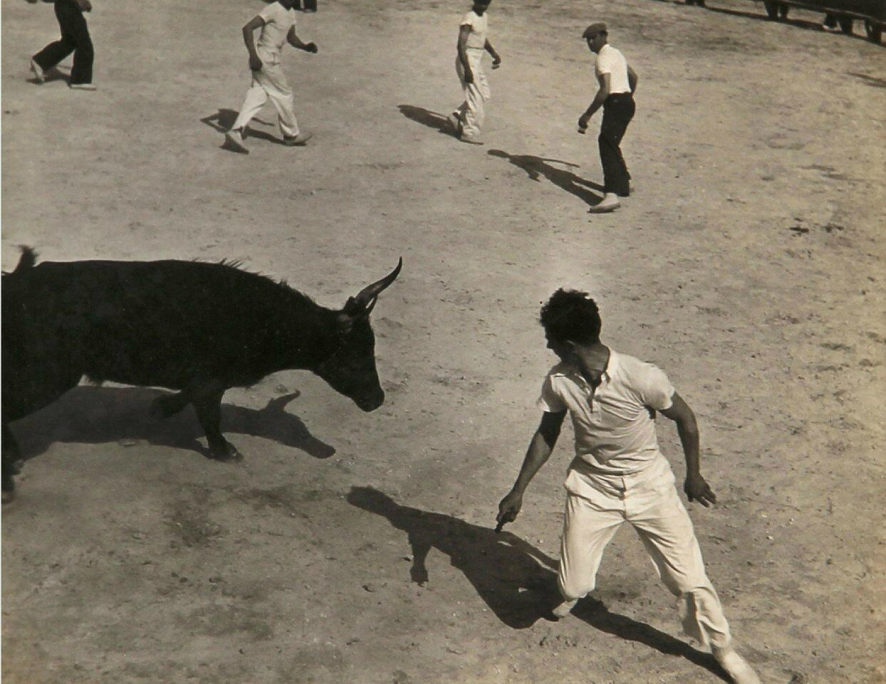 1936.  Гонки с быками в Провансе, Сент-Мари-де-ла-Мер. Часть 6
