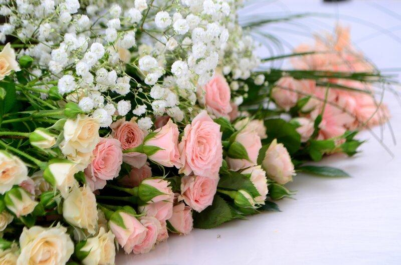 красивые весенние цветы обои для рабочего стола