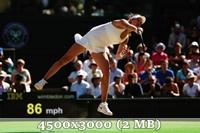 http://img-fotki.yandex.ru/get/6832/14186792.4f/0_da5f6_f41d7515_orig.jpg