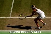 http://img-fotki.yandex.ru/get/6832/14186792.51/0_da644_b1ea0e0d_orig.jpg