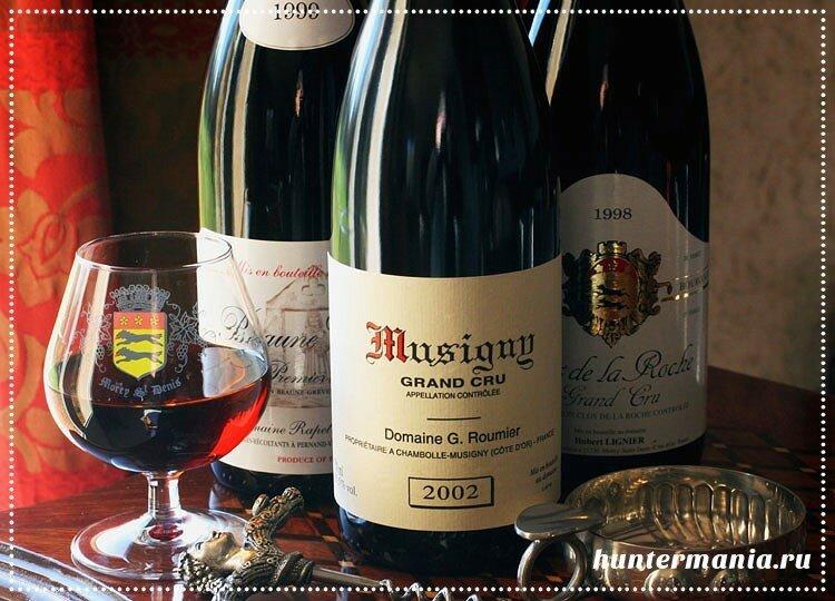 Как выбирать французское вино