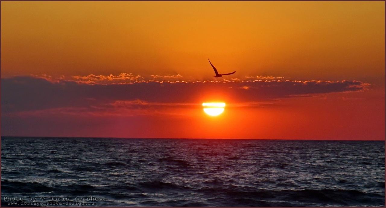 Черное море, Оленевка, фото - Дорис Ершовой