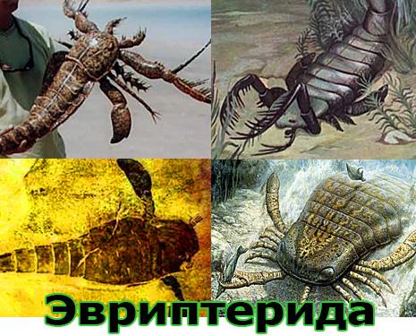 Самые большие животные в мире, существовавшие на земле (фото 13)