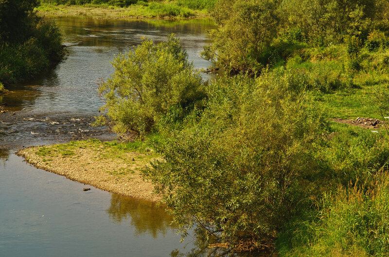 Река Вишера. Заливчик у берега