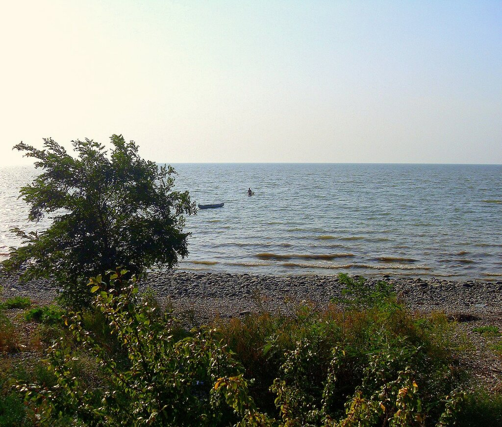 Лодка у берега ... SDC14366.JPG