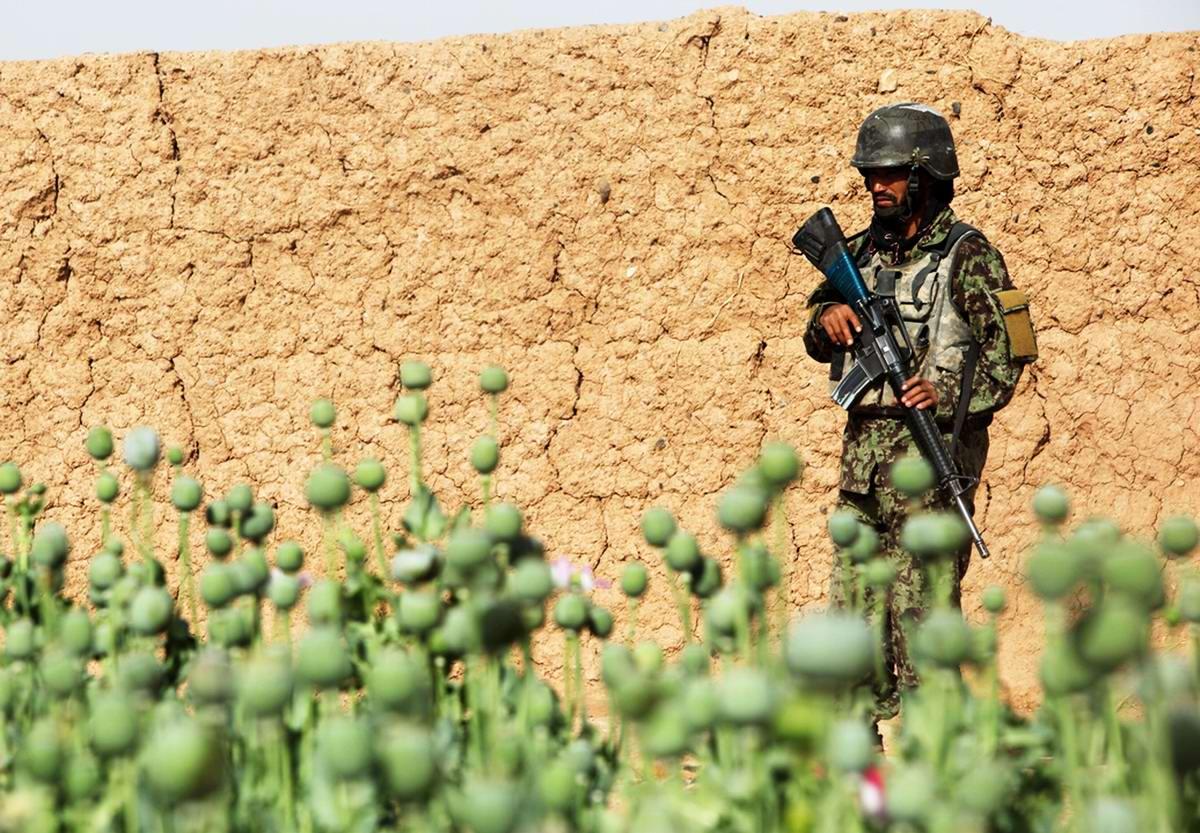 Посреди маковых полей Афганистана - фотографии военнослужащих корпуса морской пехоты США (33)