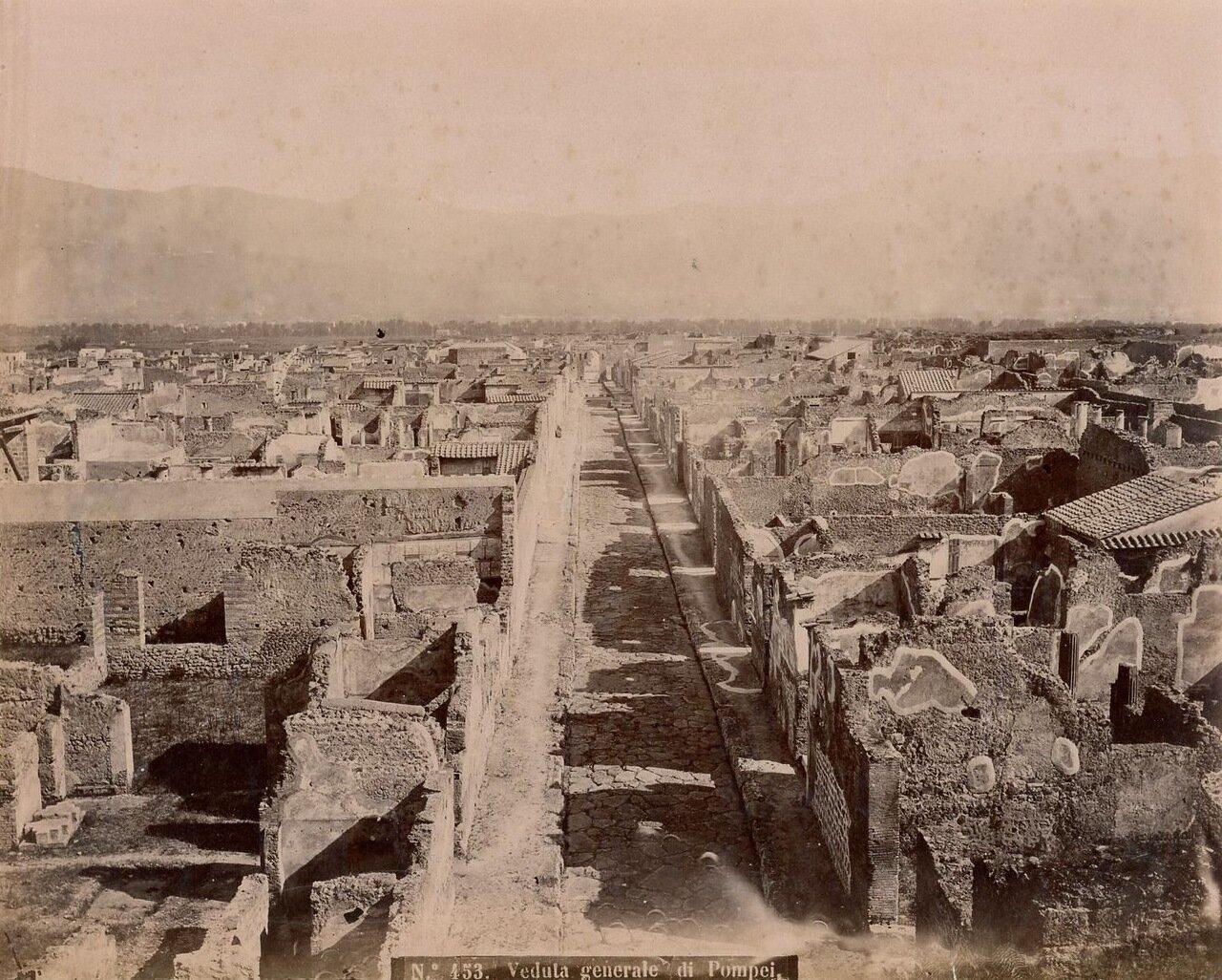 1875. Общий вид