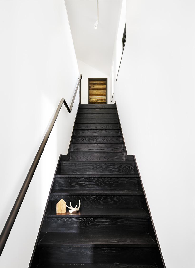 144787832413108-Stair-Casey_Dunn.jpg