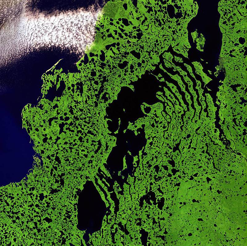 13. Скелетоподобные образования тянутся костлявыми пальцами по территории залива Ливерпуль вдоль сев