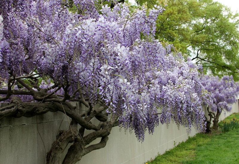 Скоро весна.