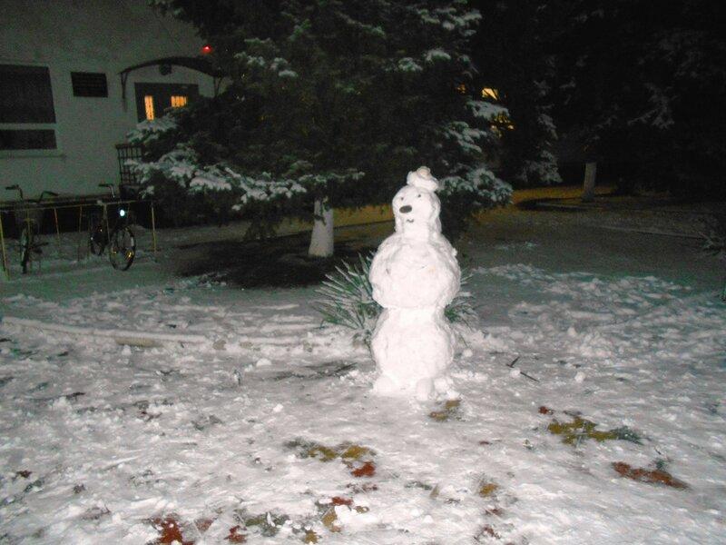 Снеговик ... DSCN3569.JPG