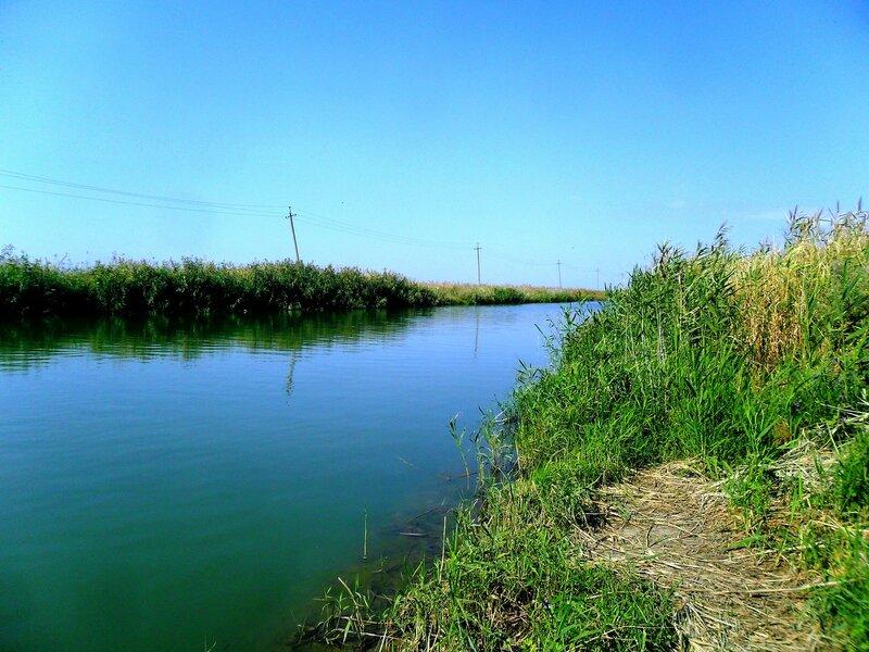 У вод прекрасных ... SAM_3571.JPG